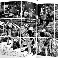 De-tanto-arbol-ya-no-vemos-el-bosque-2015
