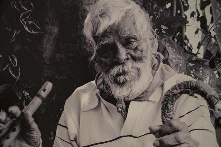 Feliciano-Mejia-Acevedo_retrato