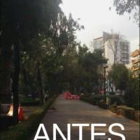 Mixcoac-tala_Antes