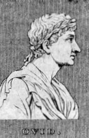 Ovidio-3