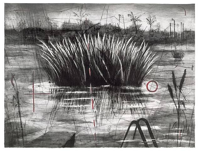 William-Kentridge-Reeds-1996.-Intaglio.-National-Gallery-of-Australia-Canberra