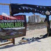 manglares-depredacion_QR